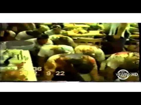 1992 – Wog Days – 9