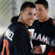 Jose Fernandez wins Rookie of the Year : )