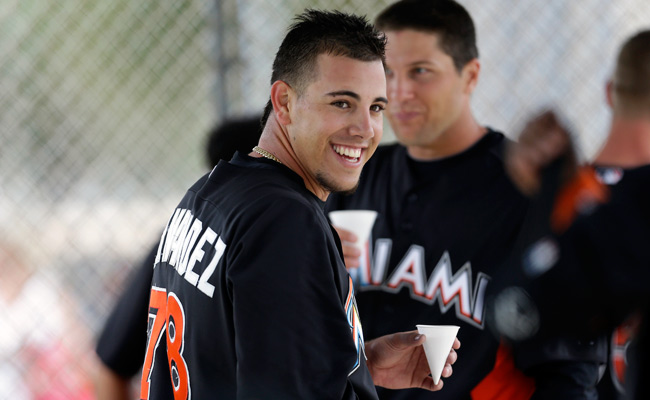 Marlin's Jose Fernandez wins NL Rookie of the Year