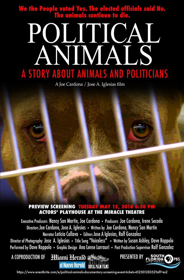 "Joe Cardona's Award Winning Film ""Political Animals"""