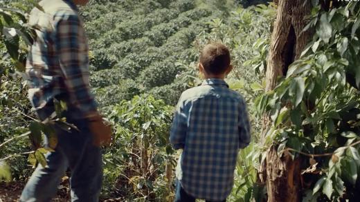 Honduran Coffee Growers